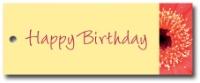Geschenkanhänger Happy Birthday - VPE 24 Stück
